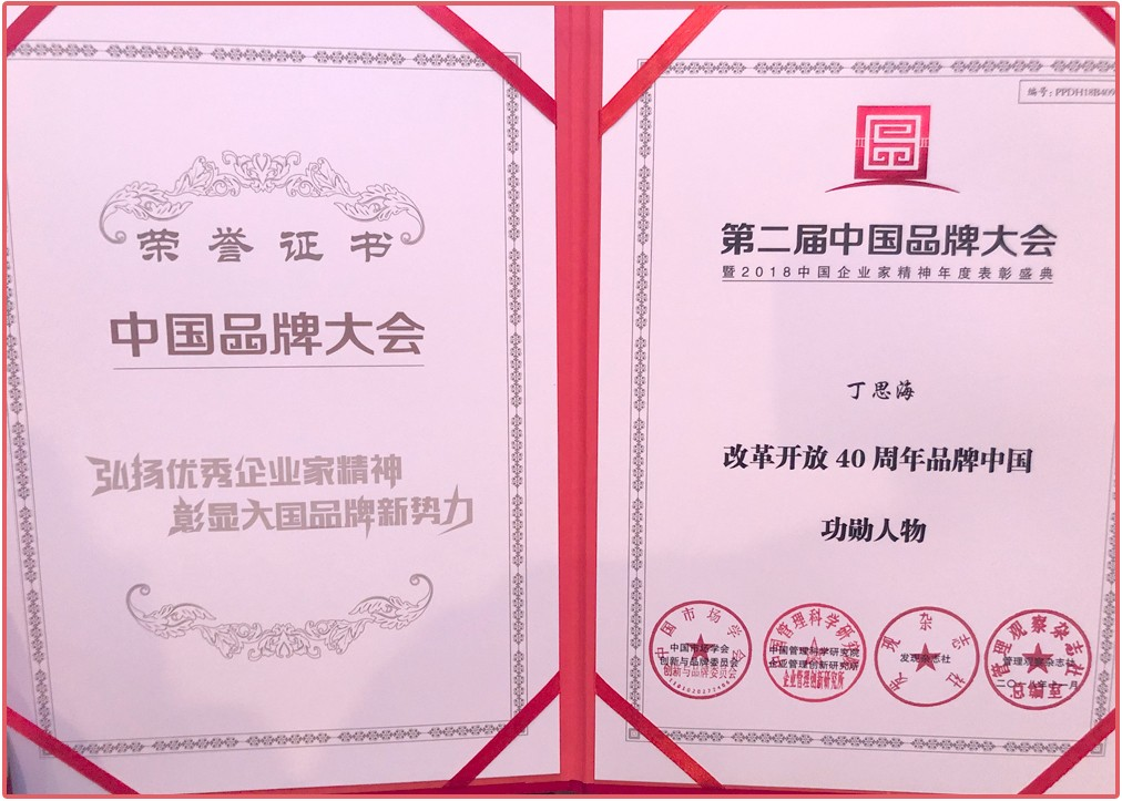 丁总-改革开放40周年品牌中国功勋人物