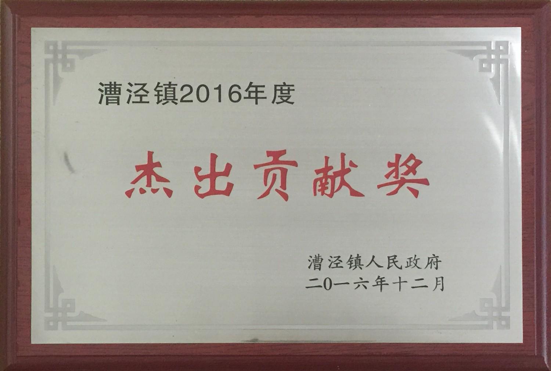 漕泾镇2016年度杰出贡献奖